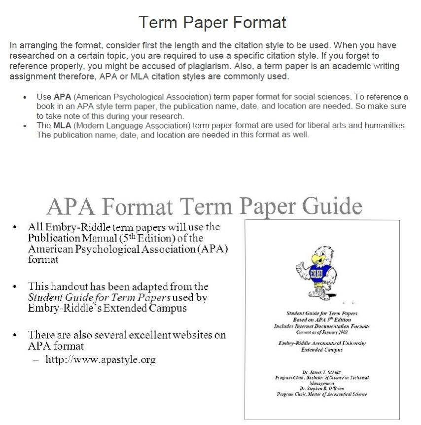 Format Of Term Paper Sample